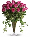 t62-1a dreaming in pink - 18 long stemmed pink roses