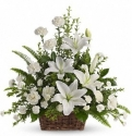 white carnation lily in basket